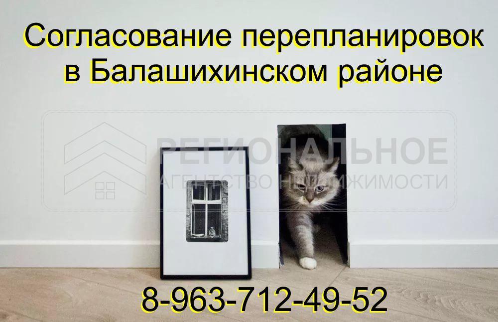 Перепланировка 100-1554898063